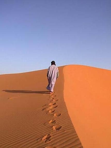 Tchad : Le guide du désert, un métier peu connu mais juteux
