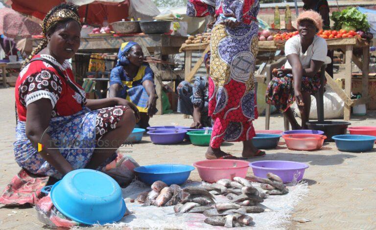 Société: pourquoi le poisson est devenu rare et plus cher?