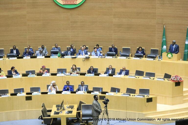 L'Union africaine suspend le Mali jusqu'au retour à l'ordre constitutionnel