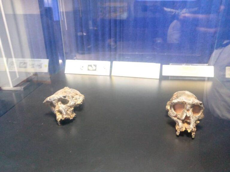 Tchad : à la découverte du musée national