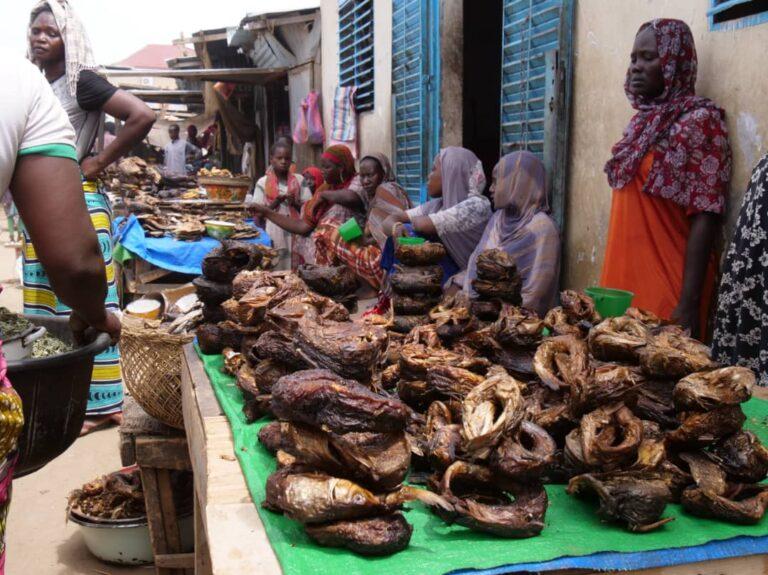 """Tchad : Taradona, le marché de """"vérité"""" des poissons séchés"""
