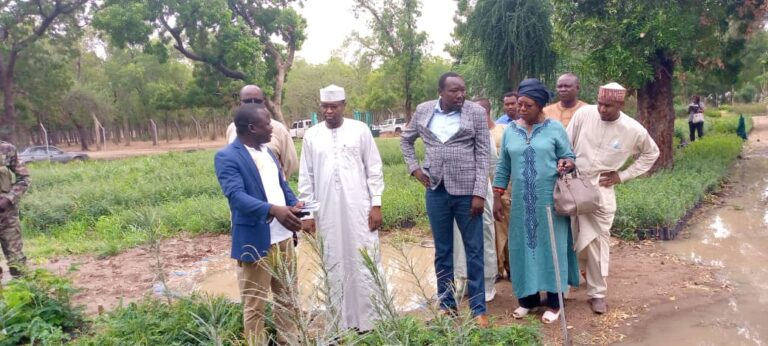 Tchad : le ministre de l'Environnement recense les difficultés des gestionnaires du jardin-forêt de Milezi