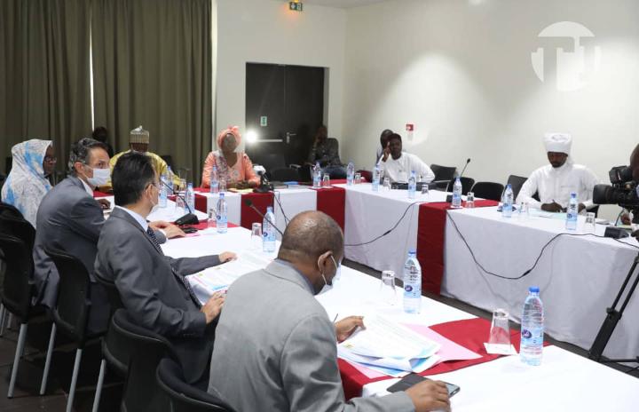 Tchad : le ministère de la Culture et de la Promotion de la Diversité présente sa feuille de route aux partenaires