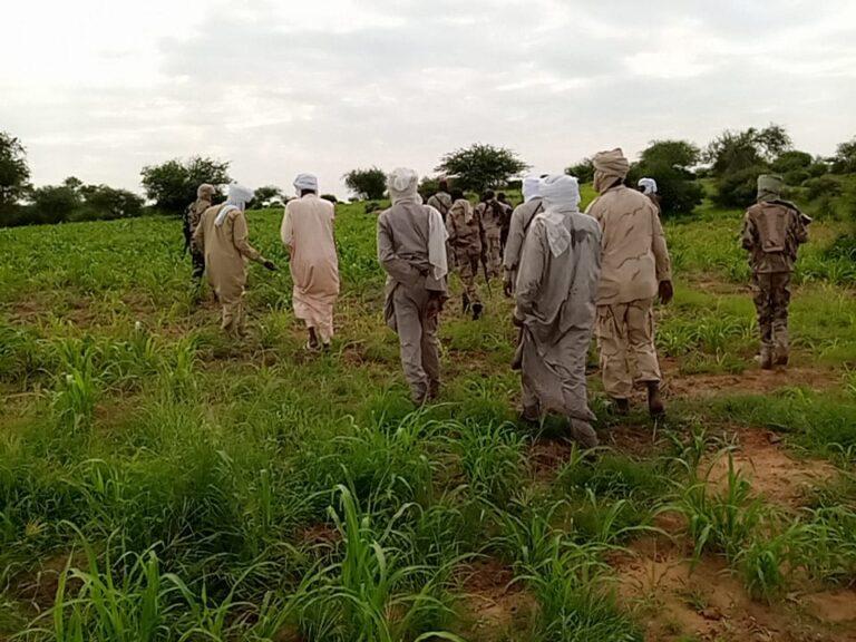 """دار وداي: تفاصيل أحداث """"تِيُو Tyou"""" تفيد بمقتل 5أفراد من طرفي المزارعين والرعاة"""