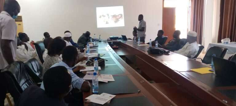 Tchad : la lutte antitabac mobilise