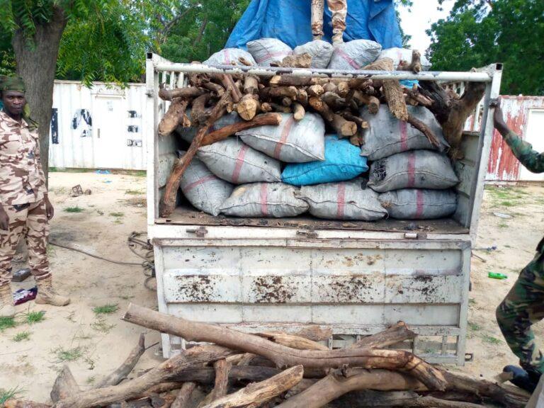 Tchad : le ministère de l'Environnement présente sa moisson